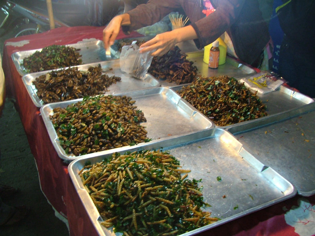 Cooked insects at a Thailand market on metal trays. Lady is collecting them and placing them into a bag for sale.