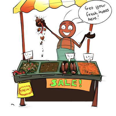 Photos of a cartoon insects selling insects at a market stall. Says get your fresh insects here!se